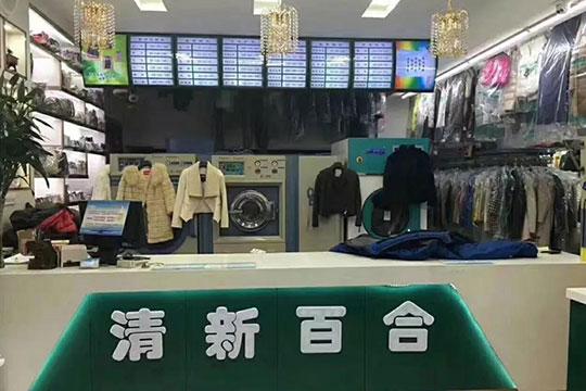 清新百合高质洗衣加盟