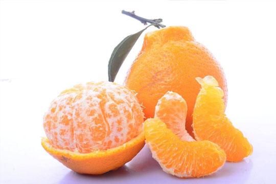 欣果坊水果加盟