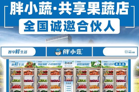 胖小蔬共享蔬果店加盟