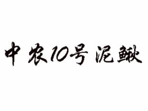 中农10号泥鳅