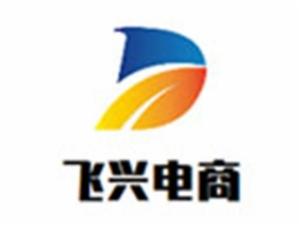 飛興電商加盟
