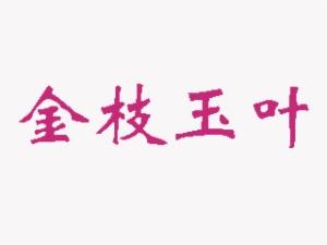 金枝玉叶KTV