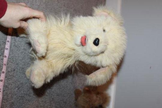 Puppy Pleasure宠物玩具加盟