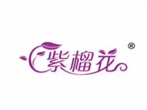 紫榴花墙漆