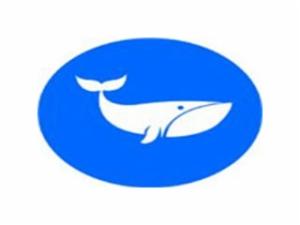鲸博少儿英语加盟