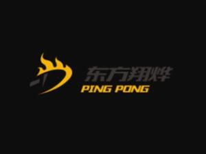 東方翔燁乒乓球教育加盟