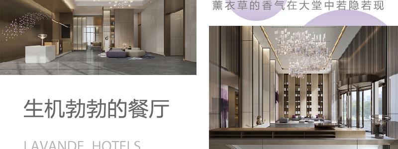 麗枫酒店lavandehotels_11