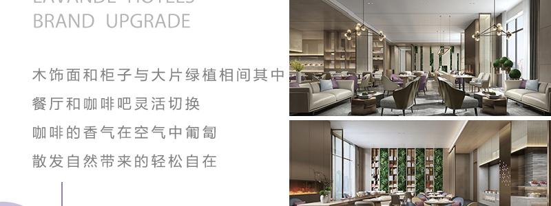 麗枫酒店lavandehotels_12