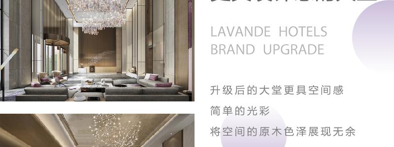 麗枫酒店lavandehotels_10