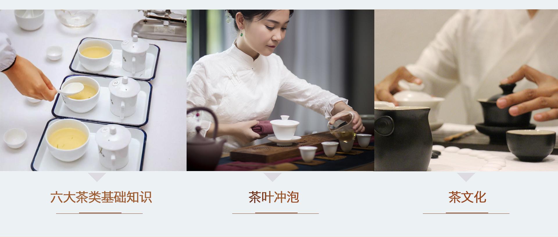 三千茶農sqcn_08