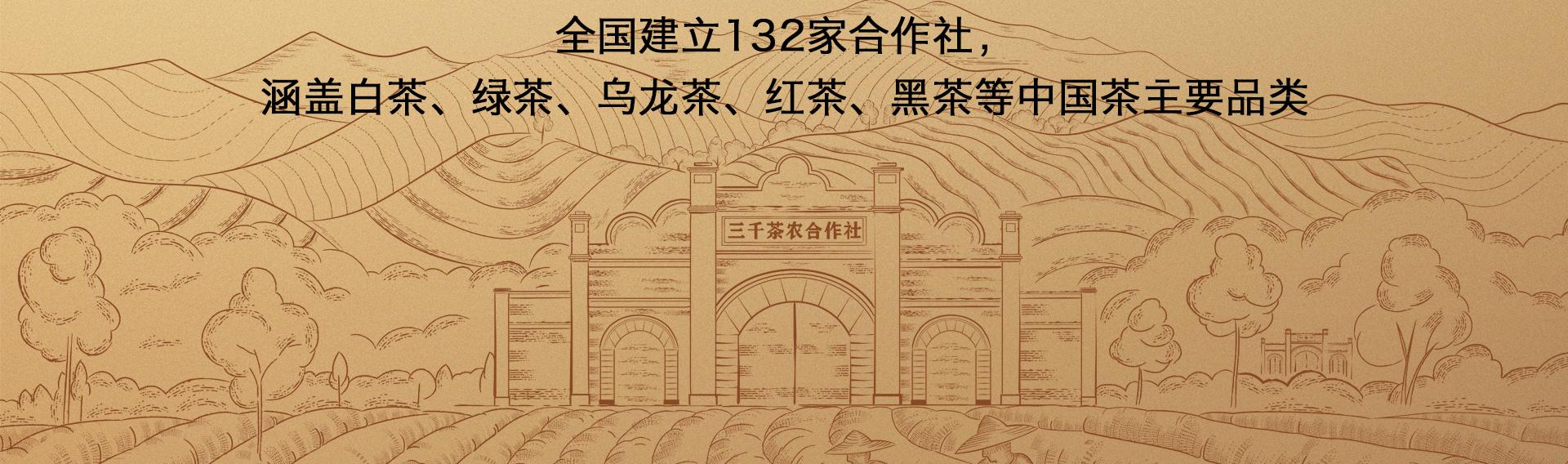 三千茶農sqcn_19