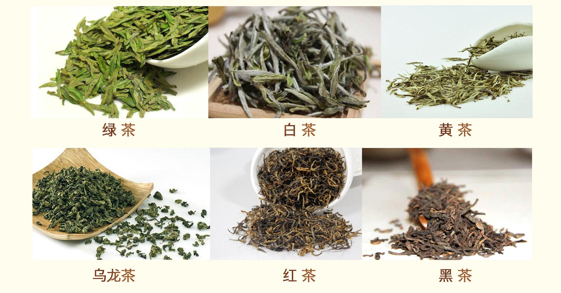 三千茶農sqcn_23