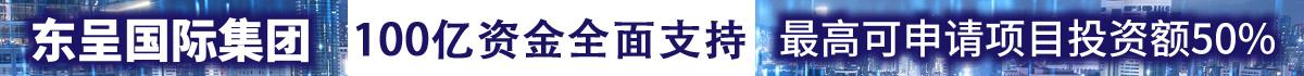 东呈国际集团